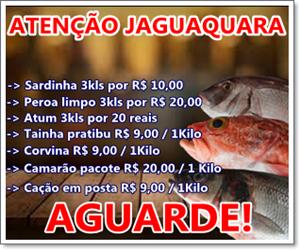 VENDA DO PEIXE ( Valor R$50,00 comissão 40% R$20,00)