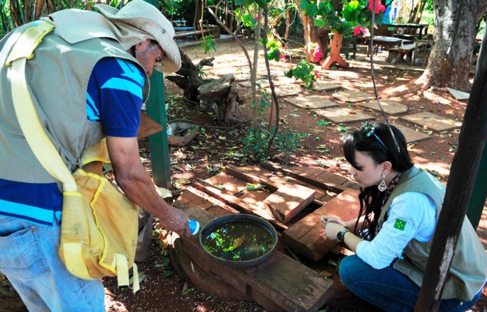 Risco de surto de dengue preocupa autoridades locais